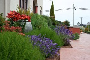 ideal style for your garden