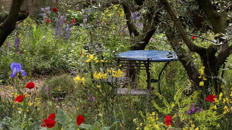 create a typical Mediterranean garden