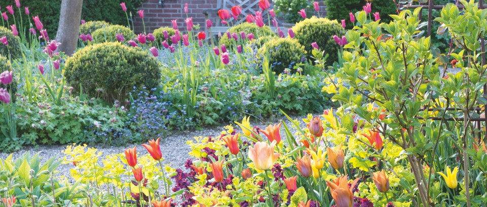 spring bulb garden layout